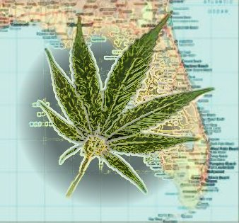 Canadian Medical Marijuana Company Based in Florida Began Public Trading Last Week