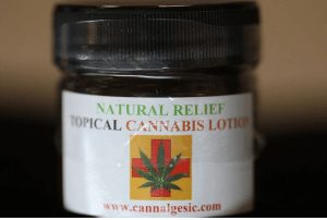 Cannabis Lotions, Can You Test Positive on Employer Drug Tests from Topicals?