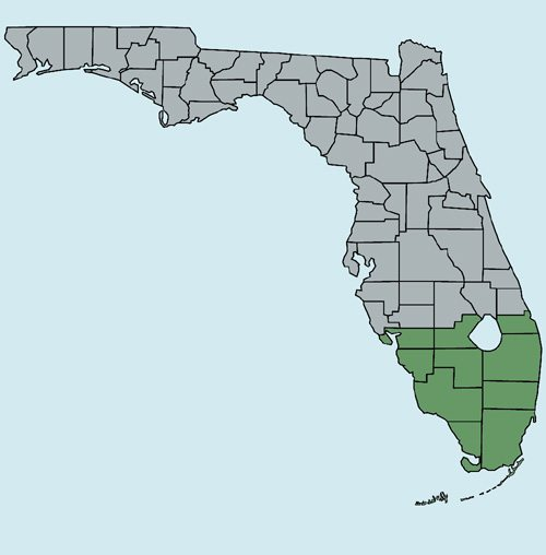 Map Northern Florida.Northern Florida Has Many Medical Marijuana Dispensaries Relative To