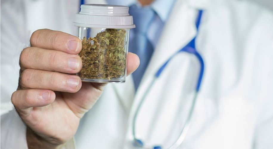 Florida Medical Marijuana Certified Physicians Have Grown by More than 400%