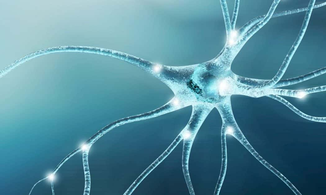 Understanding Neuropathy and How Cannabis Compounds Help