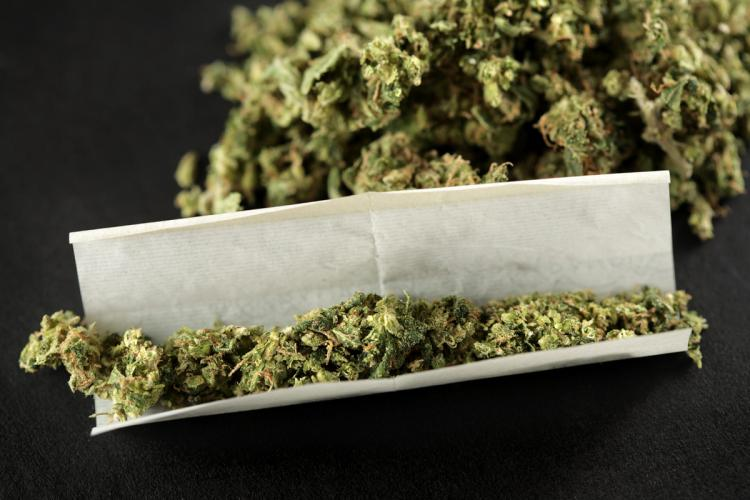 Marijuana Affects Fertility, More Research is Necessary
