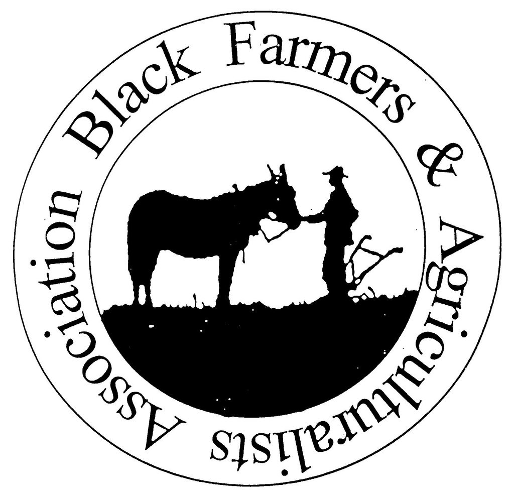 Black Farmers and Agriculturalists Association of Florida, Medical Marijuana