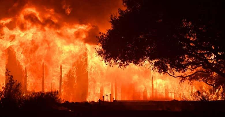 How are the California Wildfires Affecting the Marijuana Crops?